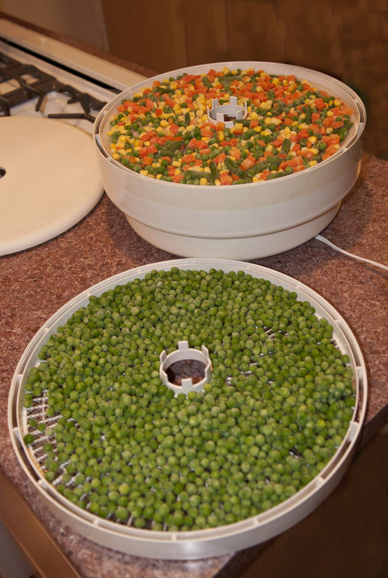 Dehydrating Frozen Vegetables Preparedness