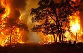 major wildfire