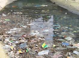 sewage-polluted