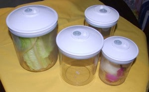 Fresh Food Saver Canisters