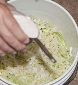Add salt to the cabbage