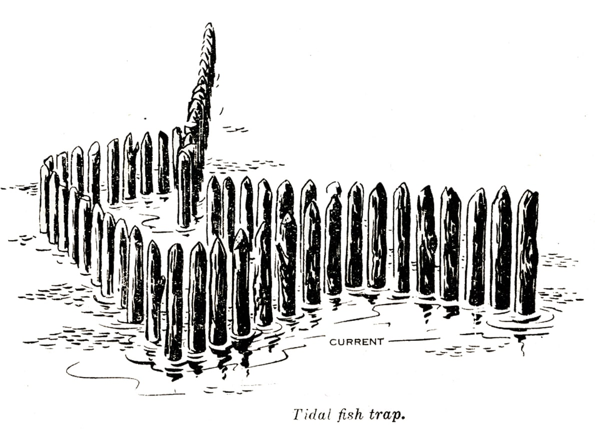 how to build a fish trap instructions