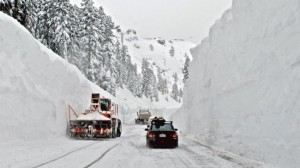 winter will affect preppers