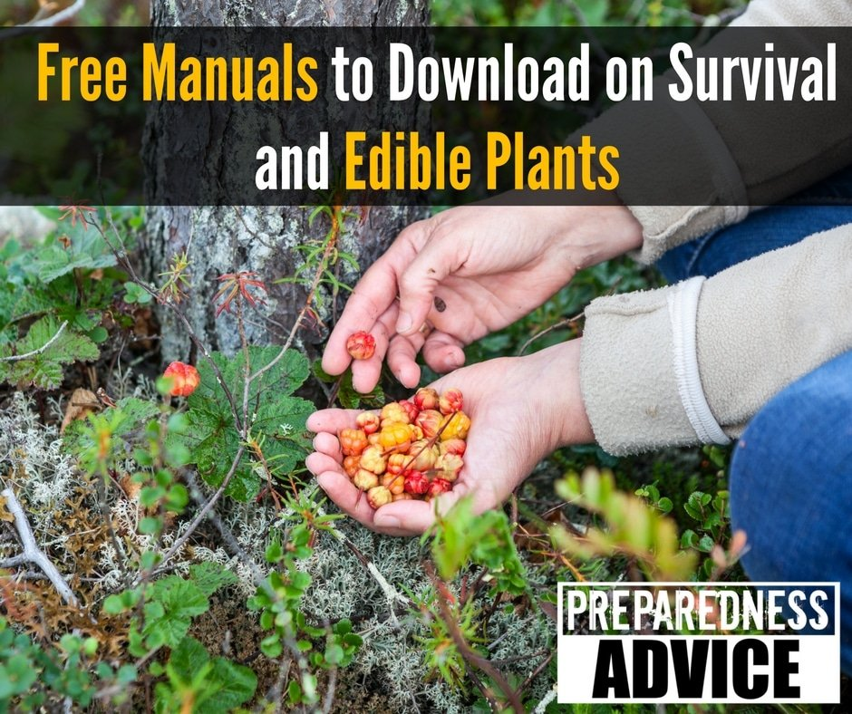 Free Manuals to Download on Survival and Edible Plants