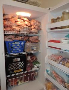 preserve the frozen foods