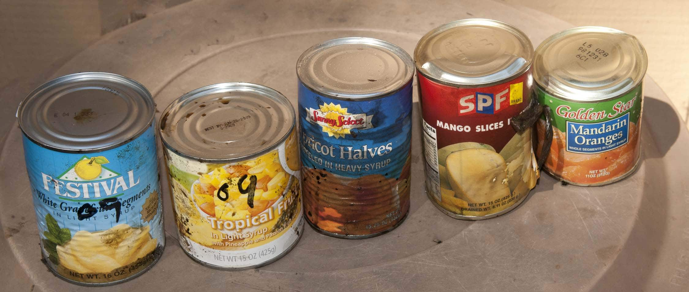 Old Dog Food Cans