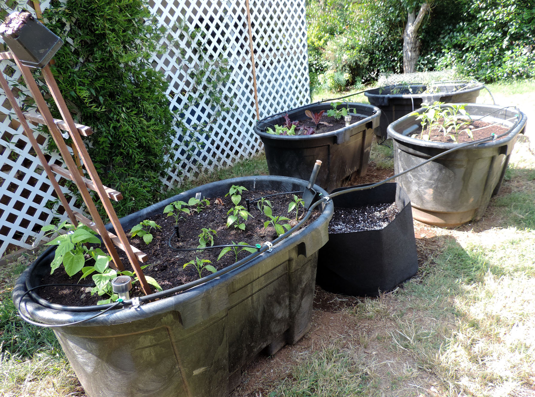 Raised beds make for easy to maintain gardens for Koi pond plastic pool