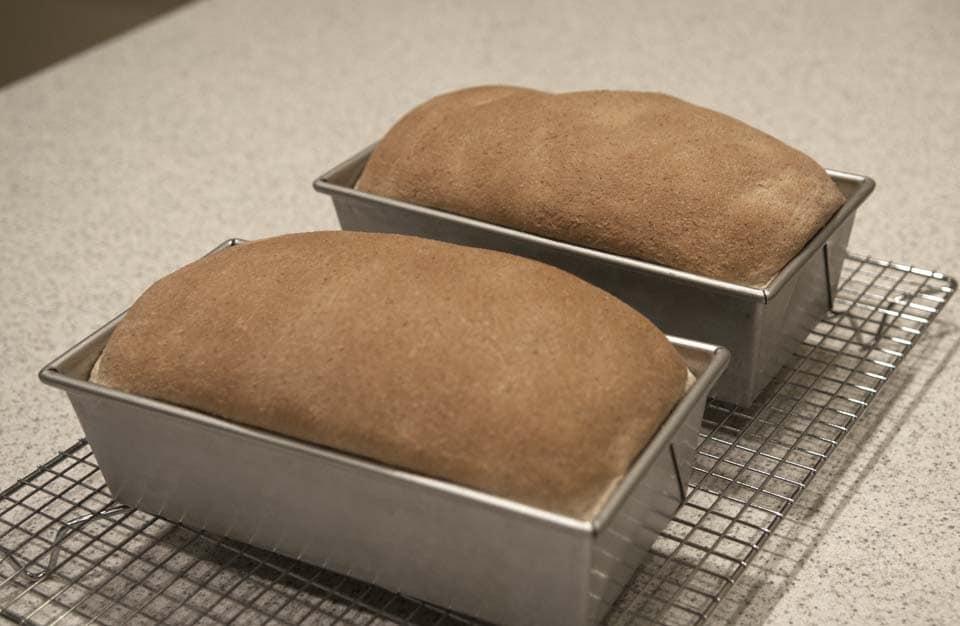 Baking Bread, Oops! Preparedness Advice Blog | Preparedness Advice ...