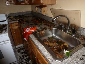 Cleaning up your home and food storage after a flood for Sewer backup in house