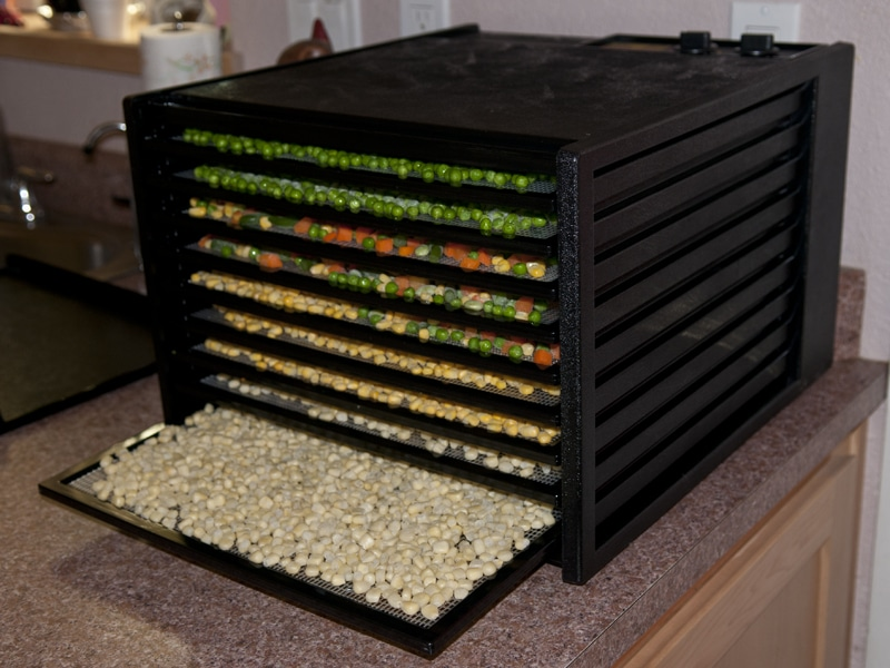 Dehydrate Vegetables For Your Storage This Summer