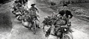 The viet cong carried huge amounts of supplies on bikes