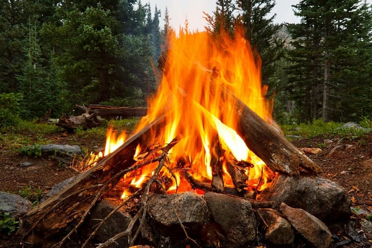 Is There A Way To Dry Firewood Fast?