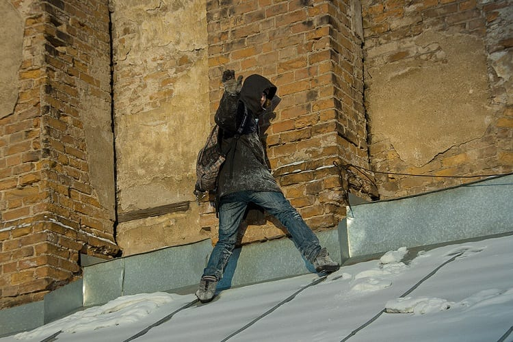 How Does Survival in an Urban Setting Differ from Others?