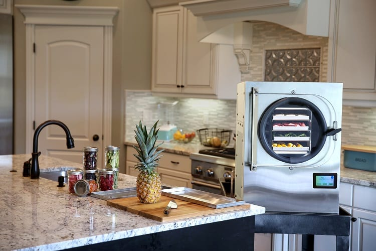 Can You Buy a Freeze Dryer for Your Home?