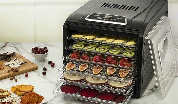 Advantages and Disadvantages of Dehydrator