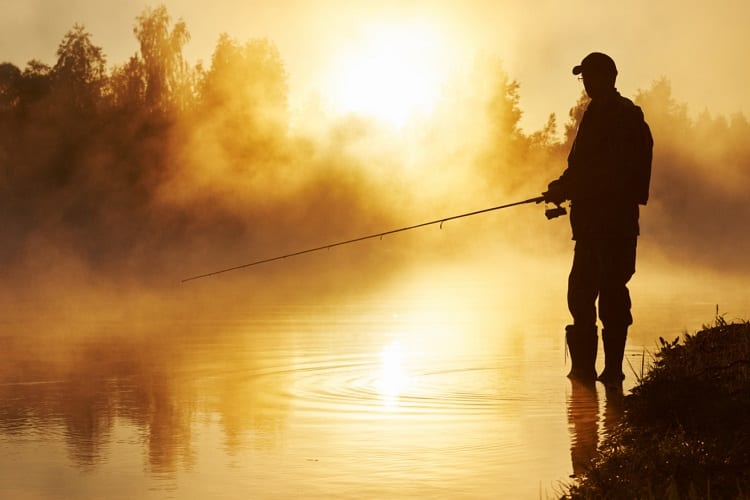 What do You Need to Fish?